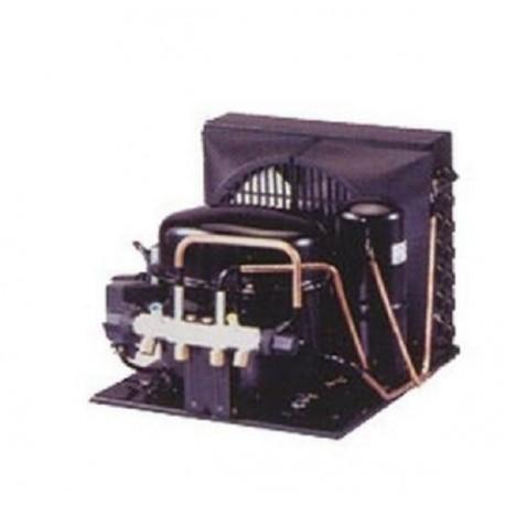 Refrigeration unit L'UNITE HERMETIQUE CAE 4440 YHR (R 134a / 230V)